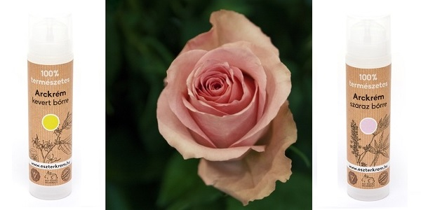 Eszterkém natúr arckrémek rózsavízzel száraz és kevert bőrre
