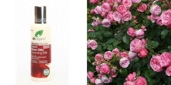 Dr. Organic rózsaolajos, rózsás arclemosó shea vajjal sls nélkül
