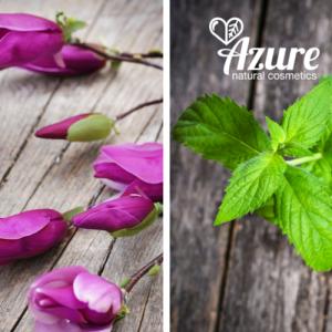 Azure-energia-no-natur-tusfurdo-bio-magnolia-bio-fodormenta-olvivaolaj