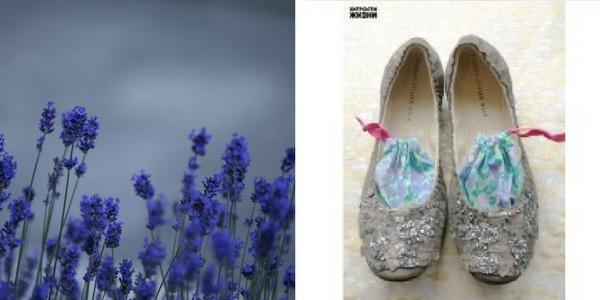 Levendula cipő dezodor házilag - leírással