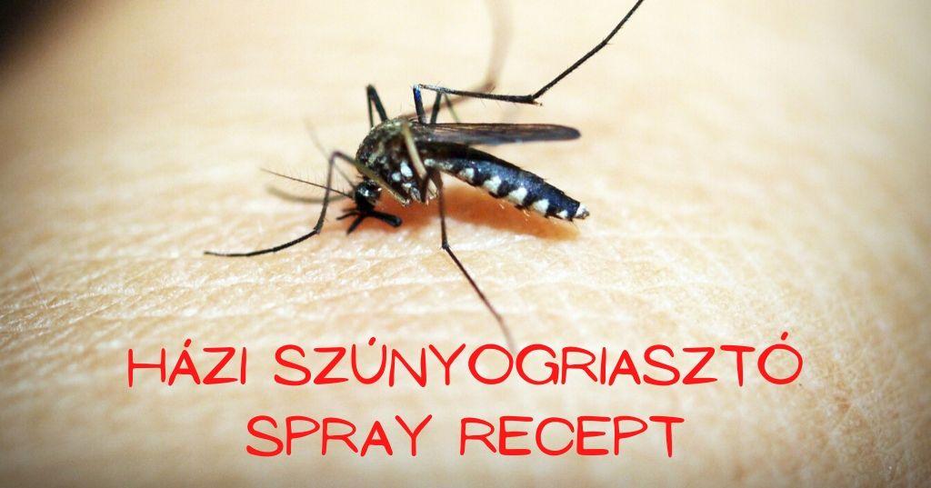 Természetes szúnyogriasztó házilag recept