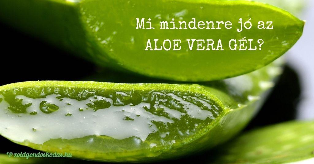 Mire jól az aloe vera gél? 17 módszer az aloe-vera használatára. Aloe vera gél arcra, testre, leégés ellen